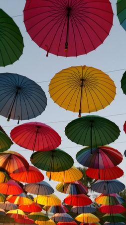 bright: Bright hanging umbrellas