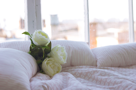 White artificial roses on the bed by the window close-up shallow depth of field toned image