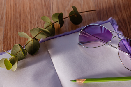 Flat lay toned image of purple fluffy notepad, purple sunglasses, twig and green pencil shallow depth of field