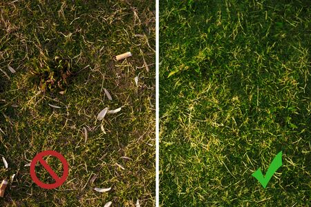 Lawn with seed shuck and cigarette butts matching before and after cleaning with ban symbol. Image is divided by white vertical line. Concept of combating environmental problems pollution.