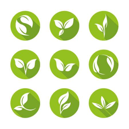Green Leaves Icon Set - Flat Design Style Illustration