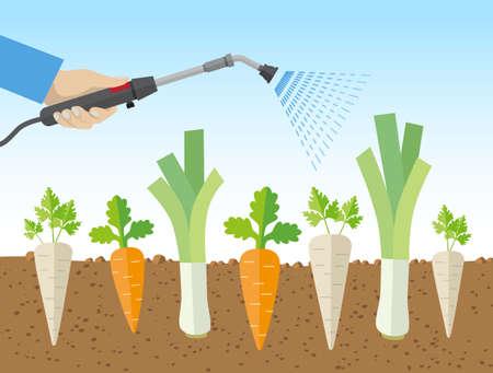 논란이되고있는 화제, 건강 위험, 곤충 멸종, 화학 물질로 채소를 뿌리는 기업