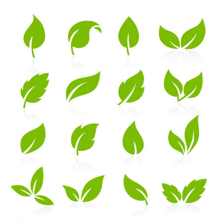 Collection of vector icons of green leaves Banque d'images - 124428184