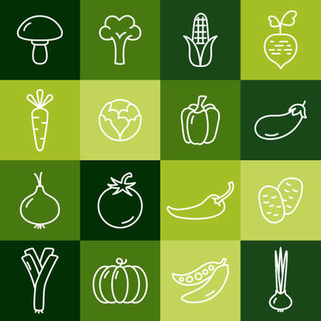 Collection of thin line icons representing vegetables, healthy eating, healthy diet and healthy lifestyle