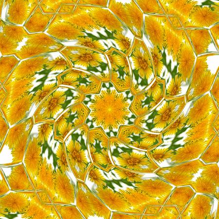 rotate circle dandelion kaleidoscope spring pattern Stock Photo