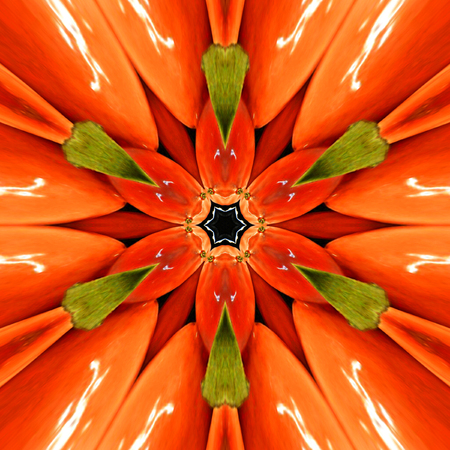 Bright orange mandala, red, green and orange kaleidoscope