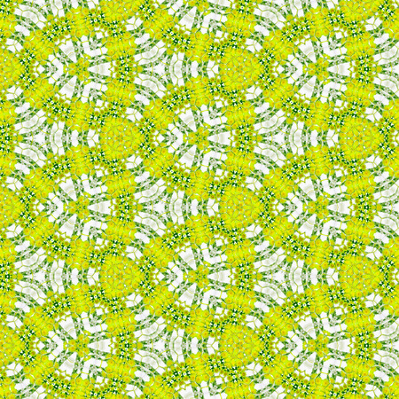 bamboo pattern, spring background, effect camomile, yellow dandelion, grass, dew of morning Stock Photo