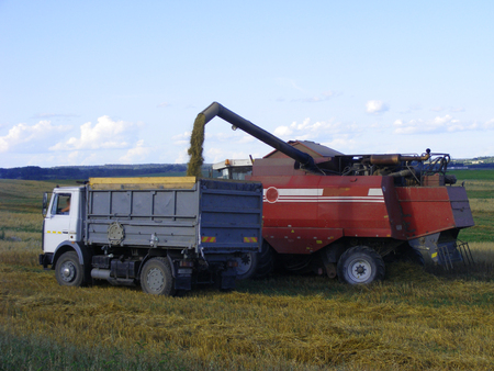 Combine Emptying Graing into A Truck