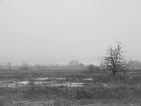 monochrome conceptual photo of waste ground and industry problems for ecology Banco de Imagens