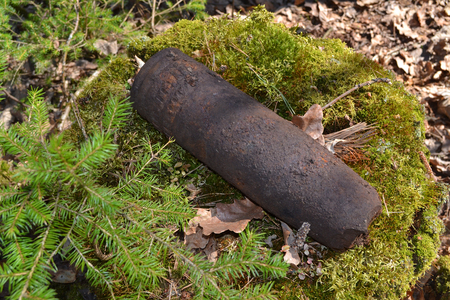 Concept of danger: old whizbang, artillery rusty whizzbang high explosive of the Second World War in thicket forest of Belarus