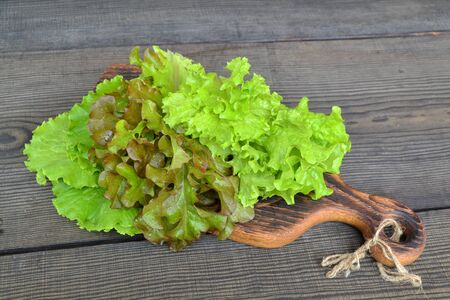 Fresh green iceberg salad, lettuce oakleaf, batavia mixed