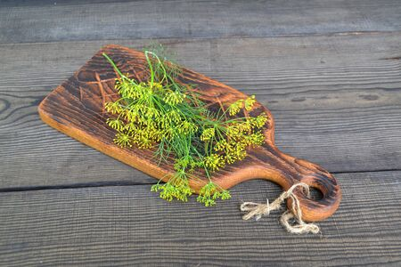 Branch of fresh green dill on rustic cutting board on vintage dark table. Dill on a dark wood background. toning. The tiny flowers on the inflorescence of a dill plant.