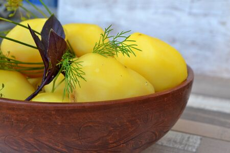Boiled potatoes with sunflower oil, basil and dill. Close up, russian cuisine Reklamní fotografie