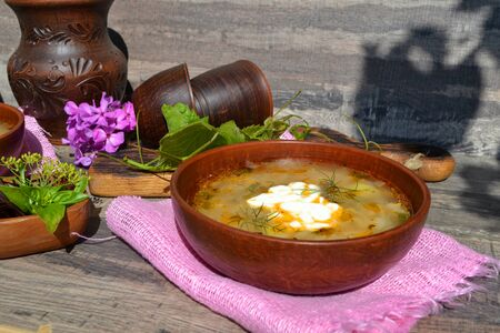Cabbage soup with meat in the rustic ceramic bowl