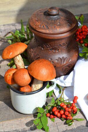 Wild Mushrooms, Red-Capped Boletes, rustic ceramic jug, red rowan berries. Vertical photo Stockfoto