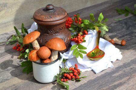 Rustic cuisine: ceramic jug, red-capped scaber stalk, orange-cap boletus and rowan Stockfoto