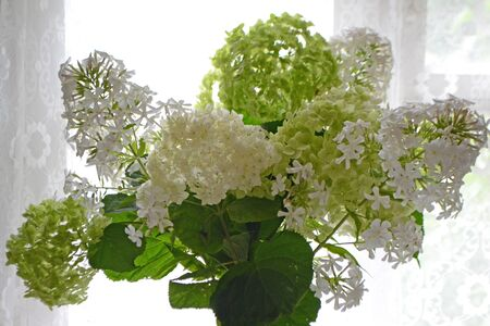 Hydrangea and phlox white bouquet of flowers