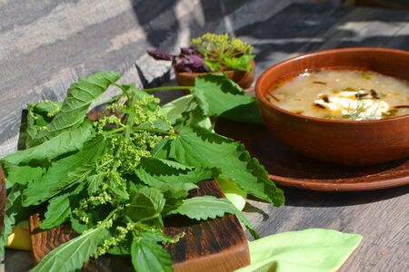 Soup with fresh nettles on the table. Russian traditional nettle leaves soup Stock fotó