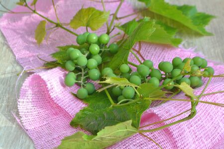 Green grape on a pink napkin and wooden table. Stockfoto - 129801021