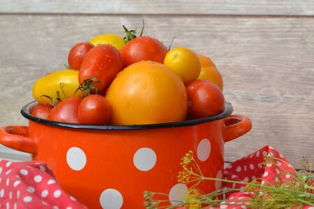 Fresh tomatoes vegetables in a red saucepan with polka dot pattern
