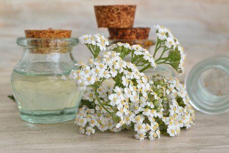 Schafgarbe (Achillea Millefolium) und pharmazeutische Flaschen mit ätherischem Öl.