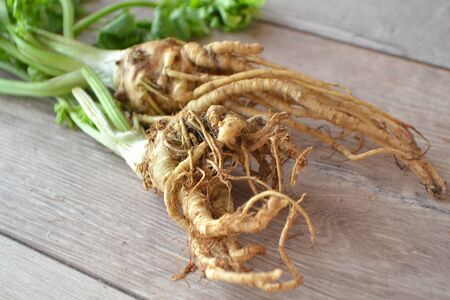 Natural rhizome of celery, close up ou white shabby table Stockfoto - 132487737