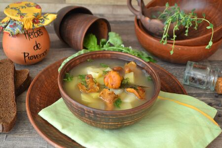 Bowl of forest mushroom soup with fried mushrooms, celery and parsley. Healthy food concept.