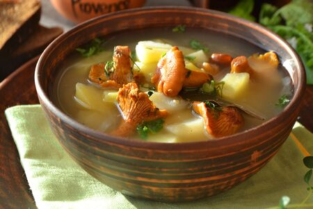 Vegetarian cuisine - soup with potatoes and chanterelles forest mushroom.