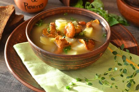 Chanterelle cream soup in ceramic rustic bowl and on the rustic table and wooden table 写真素材