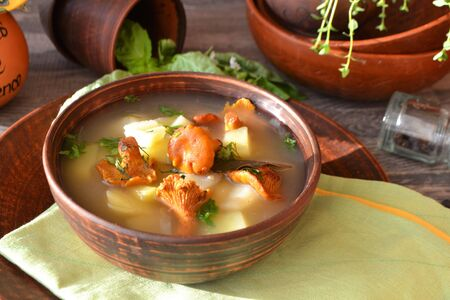 Tasty mushrooms soup with forest organic golden chanterelles. Stockfoto - 132487778