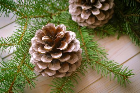Pine branch and cones on light blue wooden table Stockfoto