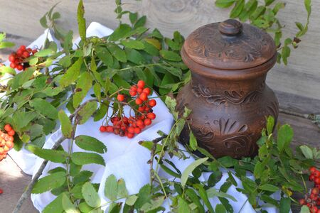 Autumn still life. Milk in rustic ceramic jug with rowan berries on vintage napkin