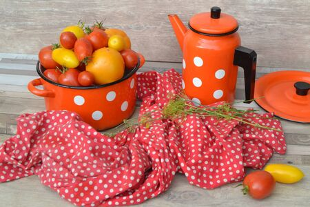Pan with fresh red, orange and yellow farm tomatoes on the shabby background, red napkin in russian style