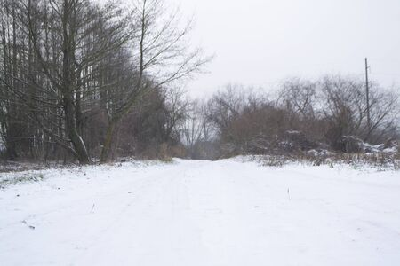 Winter rural road in forest and russian village
