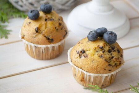 Homemade blueberry muffins made with organic ingredients, white shabby planks background.