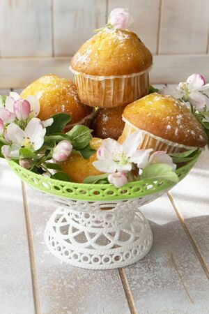 Home made muffin cupcake with sugar powder. Easter sweet dessert cake. Decorated with apple flowers
