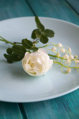 White tender flowers on blue plate and teal table Banco de Imagens