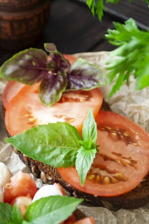 Traditional italian bruschetta appetizer or snack with tomato slace and basil, antipasto. Vertical image