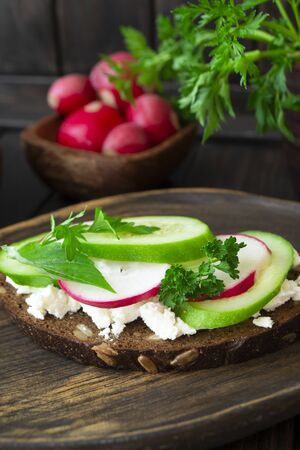 Bruschetta with cucumber, radishes and persil on wooden dark board, vertical image