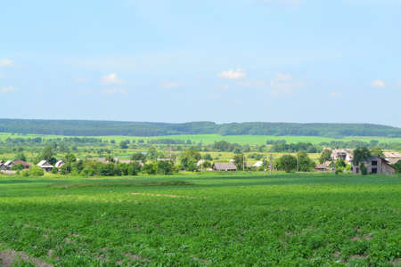 Beautiful summer landscape in a village in Belarus. A beautiful summer day in the countryside. Village Talkovshina, Grodno region