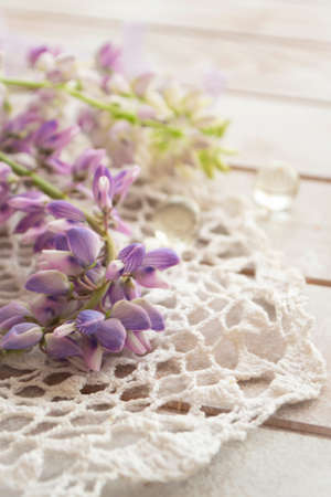 Purple lupin flowers with vintage lace on white background. Lupinus, lupine. Tender card, vertical image Archivio Fotografico