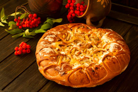 Traditional homemade pumpkin pie decorated by apple and rowan berries Stockfoto