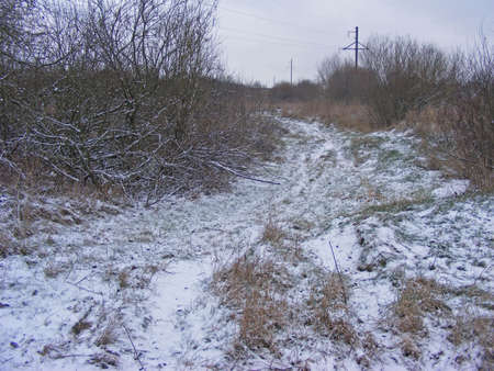 Single lane road pathway in a white mist. First snow. Atmospheric autumn landscape.