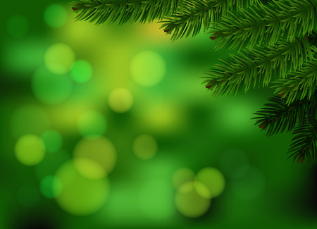 Green fir branch background  Holiday green blurred background with realistic spruce branch  Vector  Vector