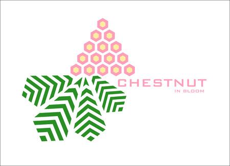 chestnut: Blooming Chestnut logo design template. Stylizing flower and leaf of chestnut tree icon such us logotype. Vector illustration Illustration