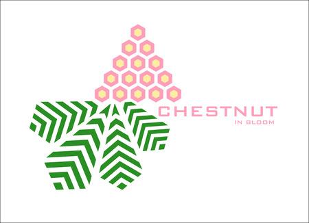 chestnut tree: Blooming Chestnut logo design template. Stylizing flower and leaf of chestnut tree icon such us logotype. Vector illustration Illustration