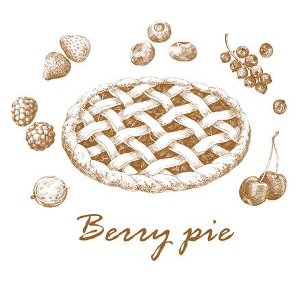 pastel de manzana: Tarta de Berry. Dibujado a mano a la imagen gr�fica de pastel de manzana y bayas diferentes. Estilo retro. Ilustraci�n del vector. Vectores