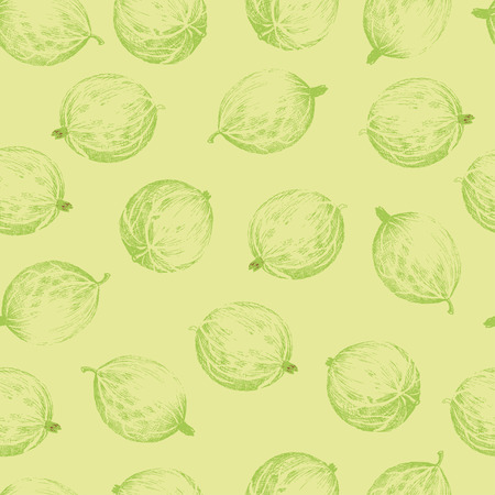 foreshortening: Gooseberries seamless pattern. Seamless pattern with colored hand draw graphic gooseberries. Vector illustration. Illustration