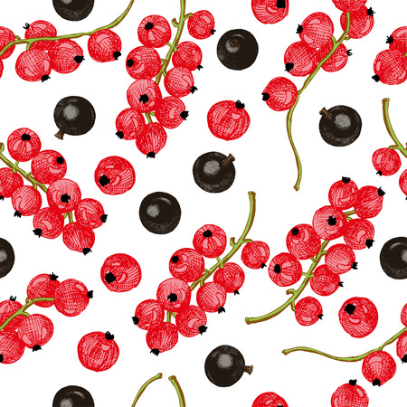 foreshortening: Black and red currant seamless pattern. Seamless pattern with colored hand draw graphic red and black currant. Vector illustration. Illustration