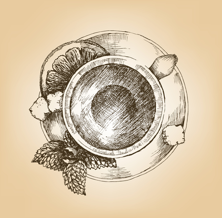 Cup of tea with mint and lemon top view. Cup with tea, sprig of mint, lemon slice and loaf-sugar on saucer. Top view. Hand drawn graphic illustration. Vector